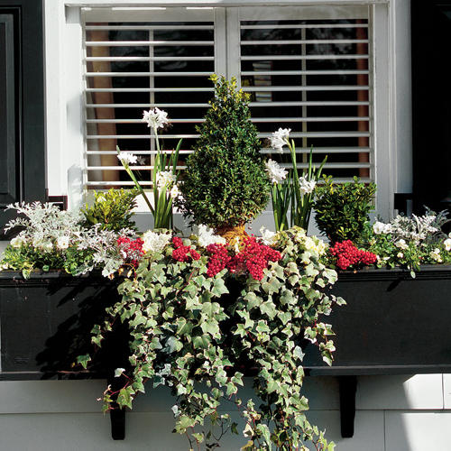 Winterize Your Window Box
