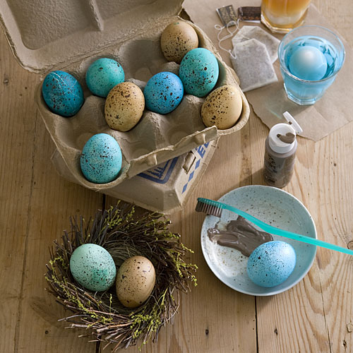 Robin's Egg Blue Eggs