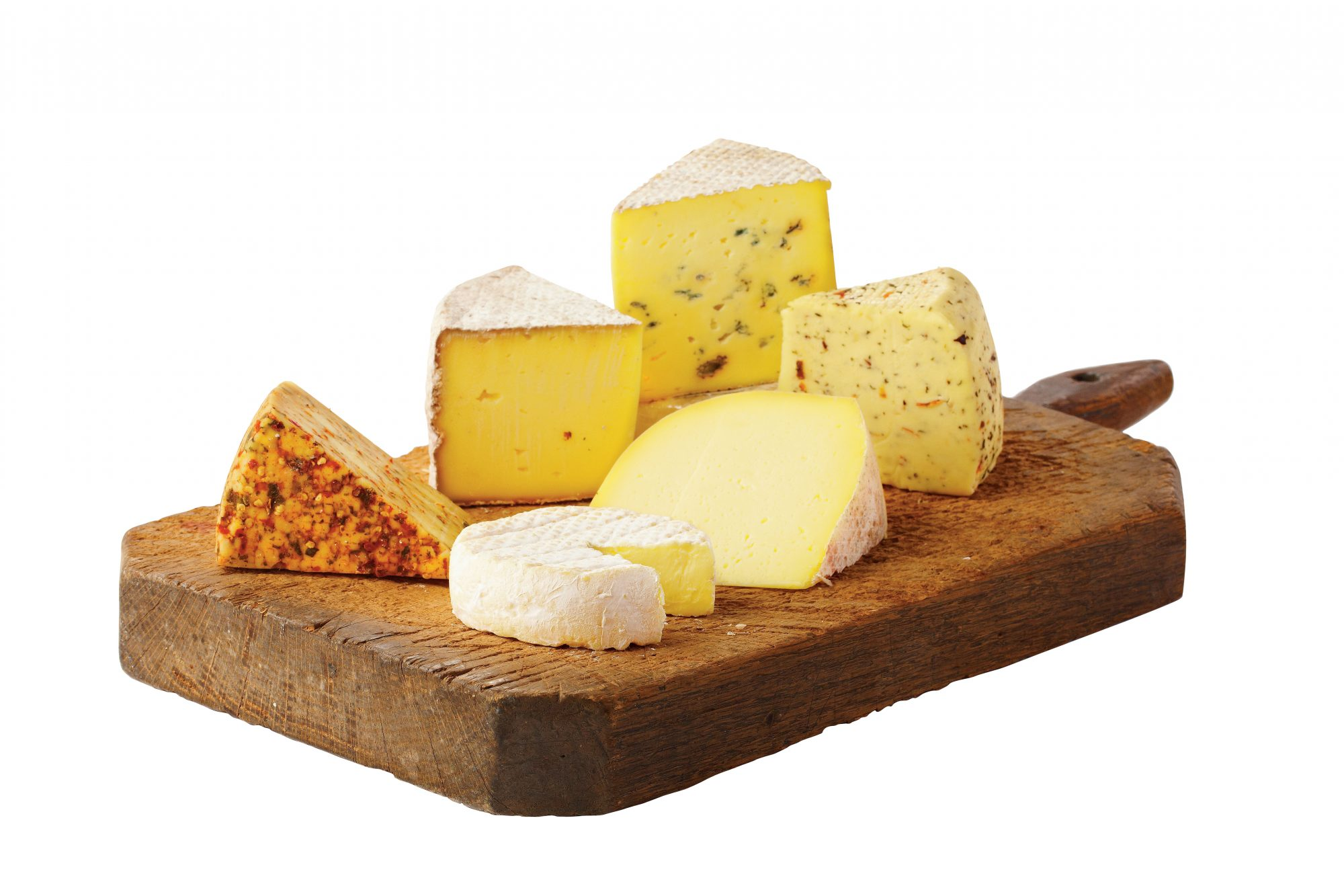 Cheese Camp