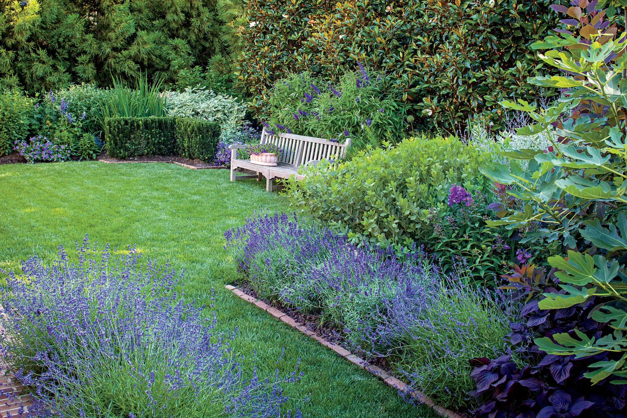 Backyard Garden in Shades of Blue