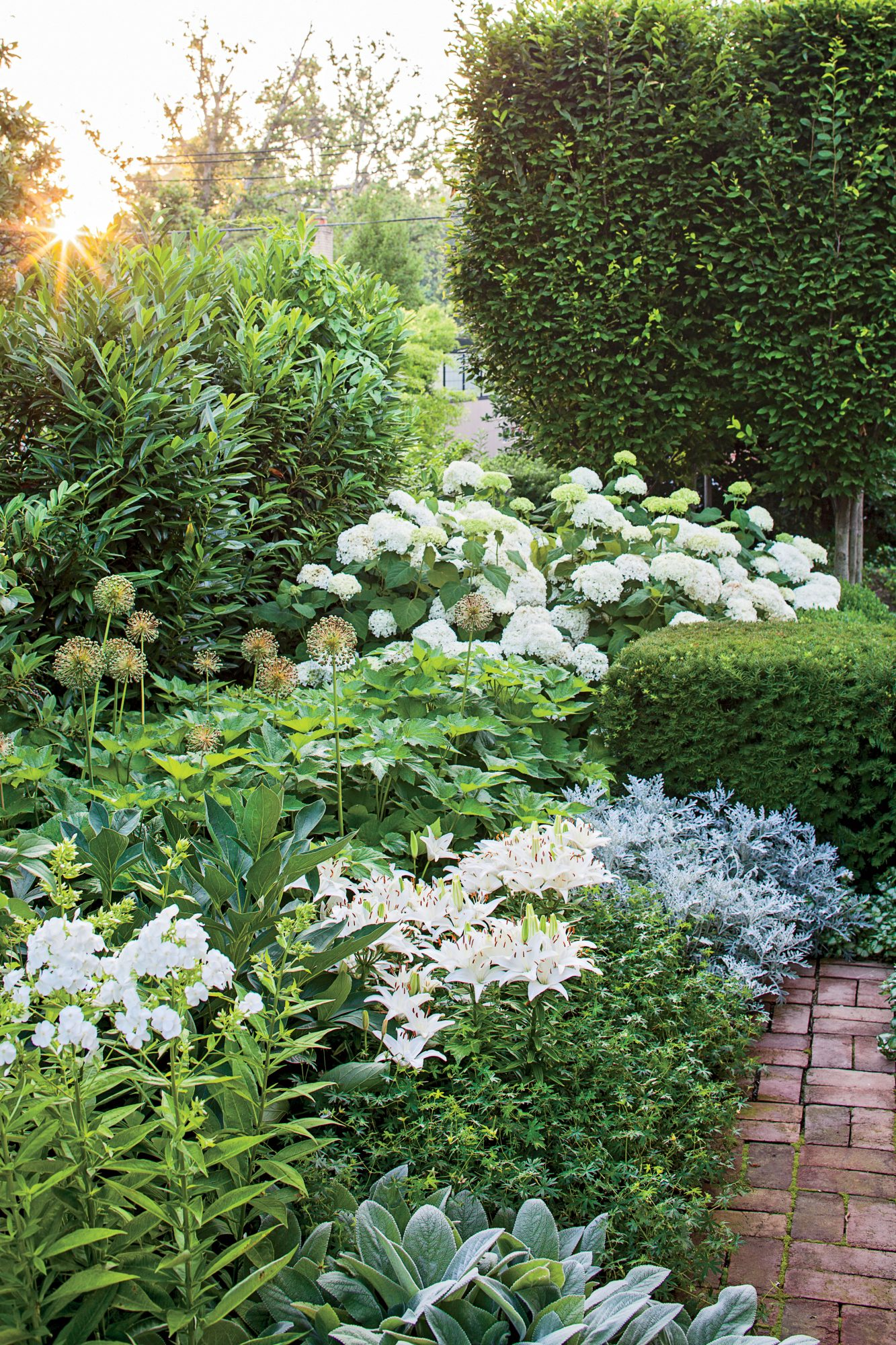 Lush Garden Side Yard Border