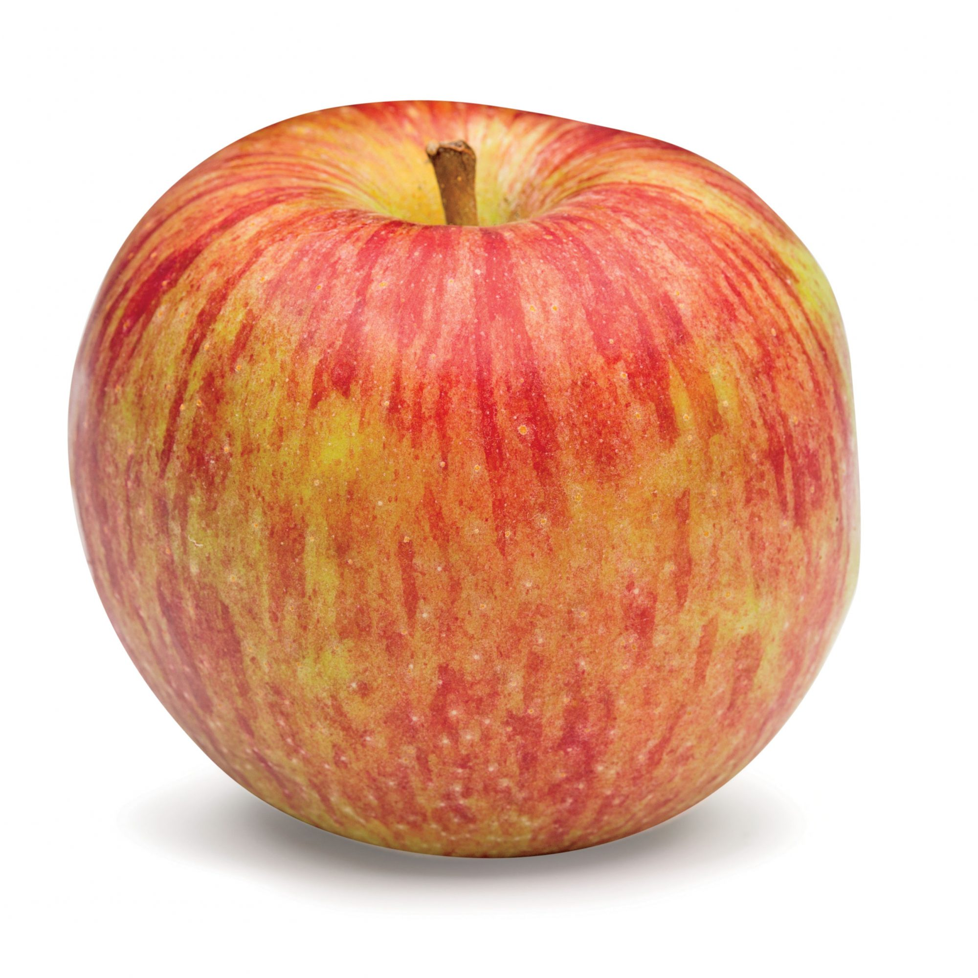Winesap Apple