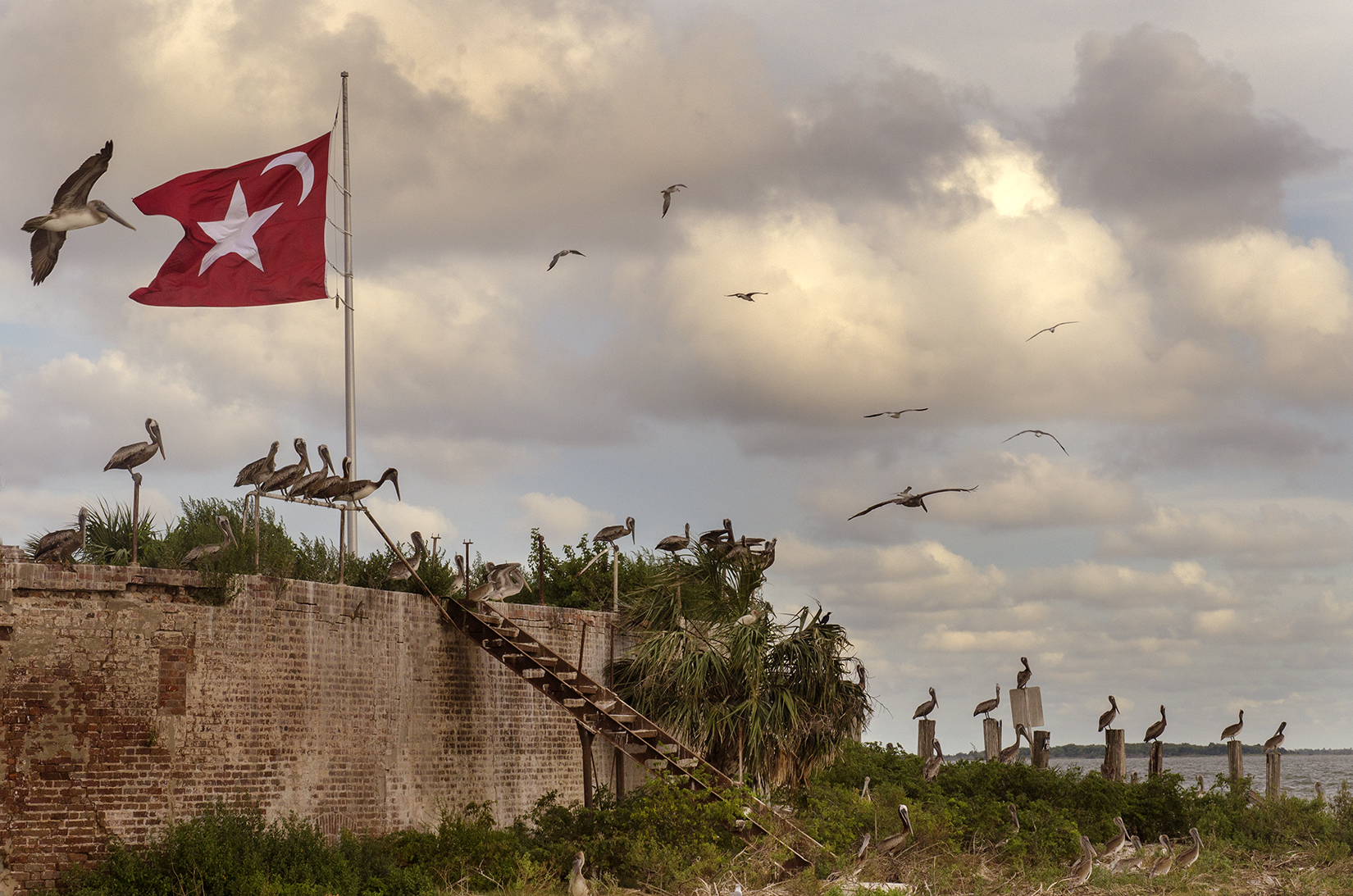Flags of Secession - Castle Pinckney
