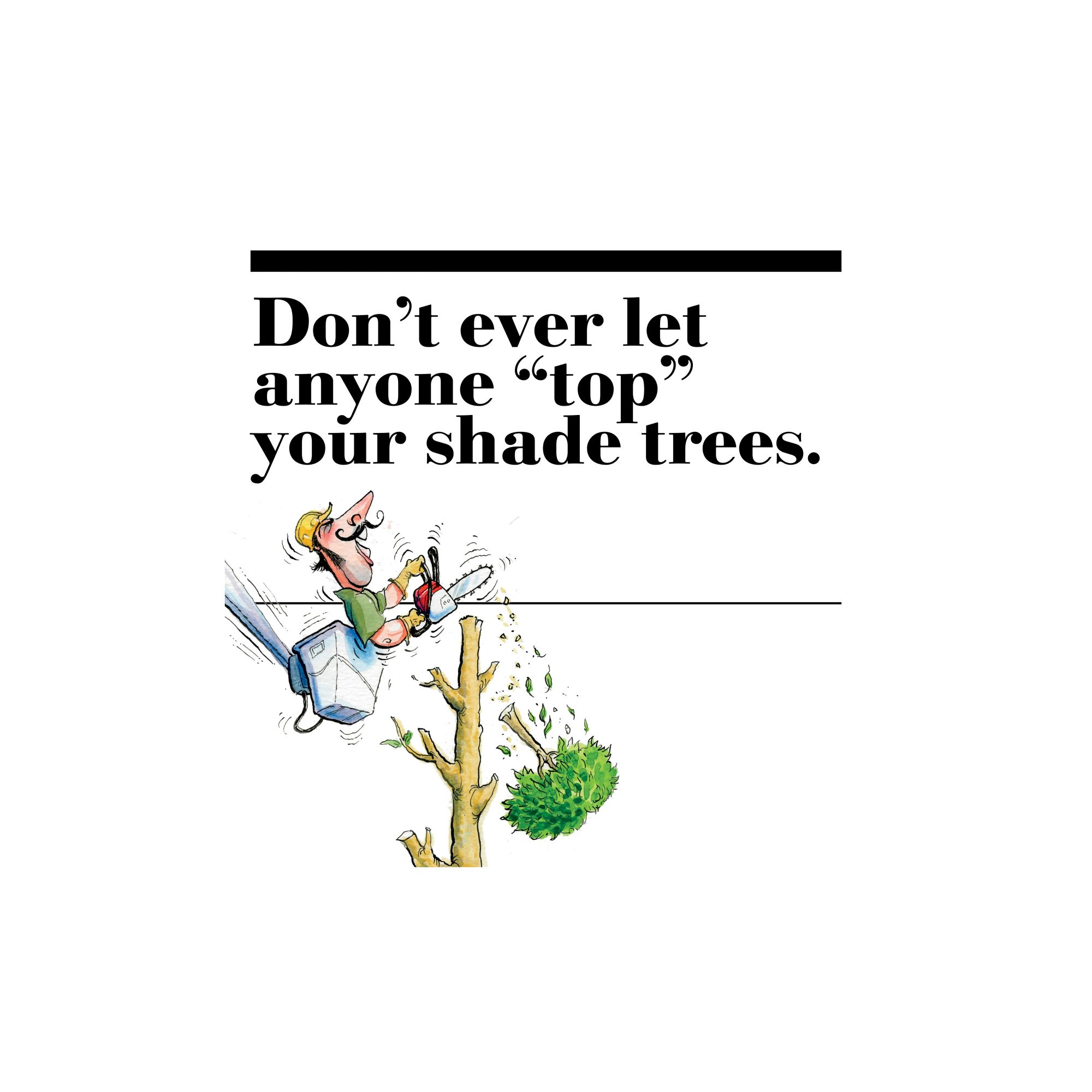 """1. Don't ever let anyone """"top"""" your shade trees."""