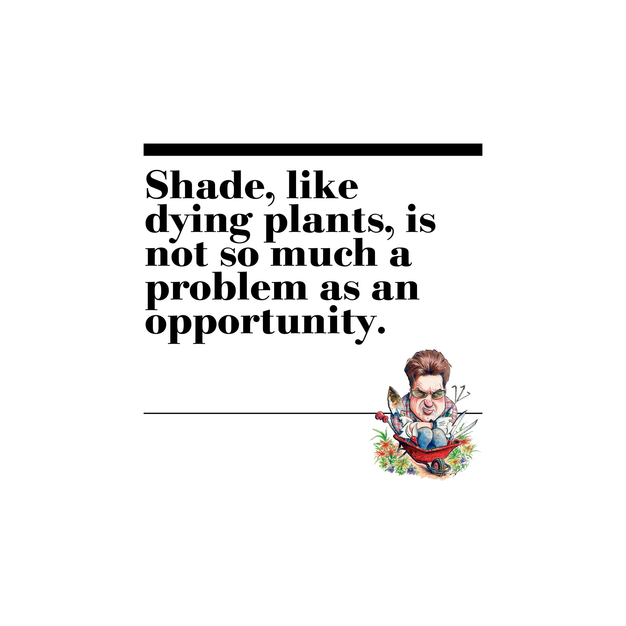 18. Shade, like dying plants, is not so much a problem as an opportunity.