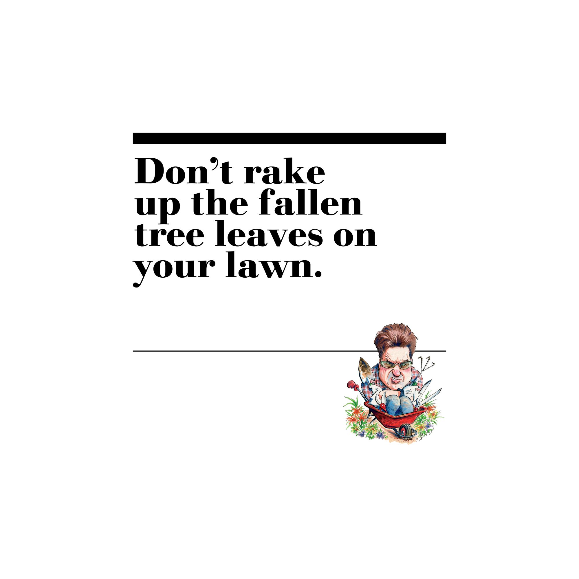 38. Don't rake up the fallen tree leaves on your lawn.