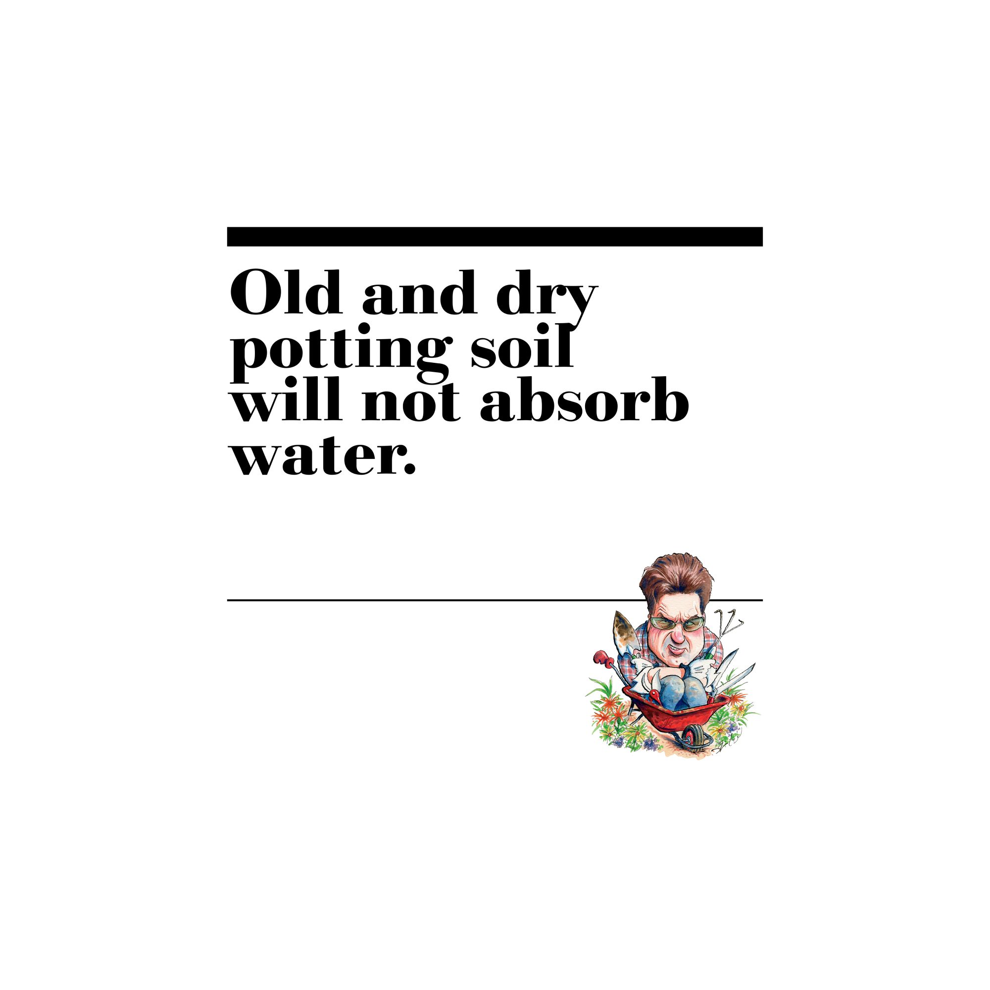 47. Old and dry potting soil will not absorb water.