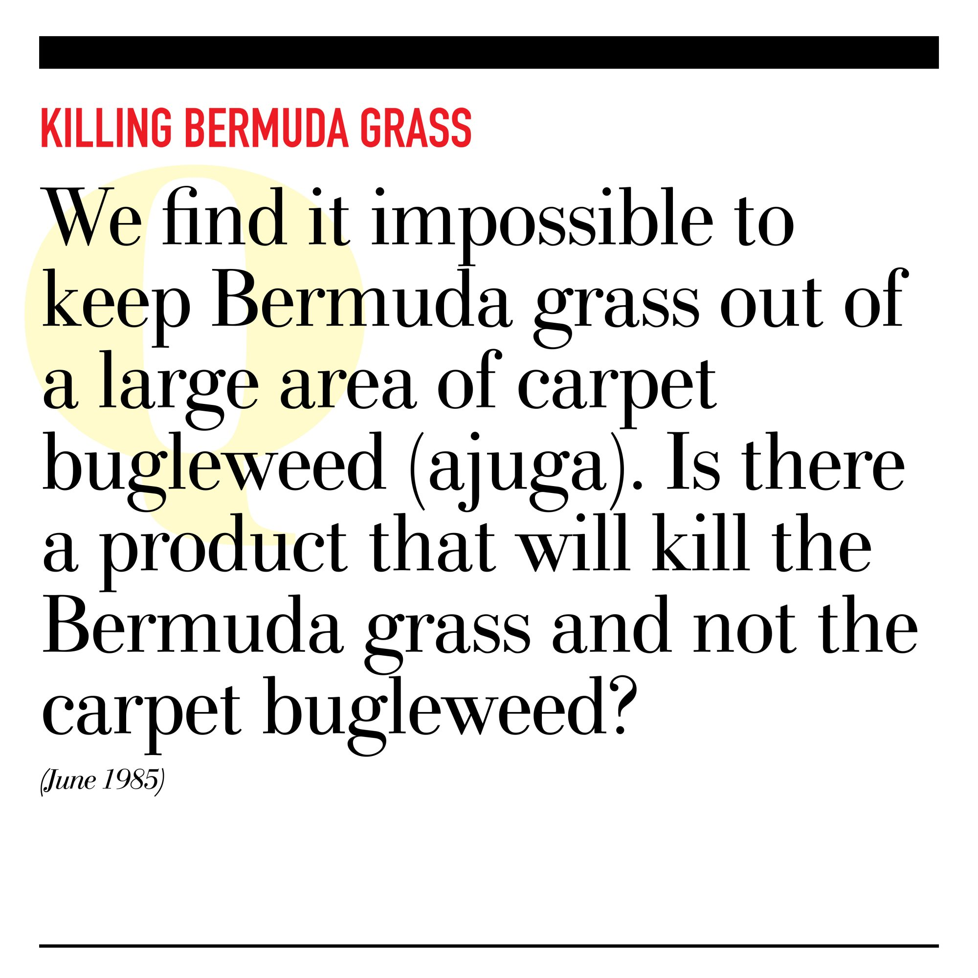 Killing Bermuda Grass