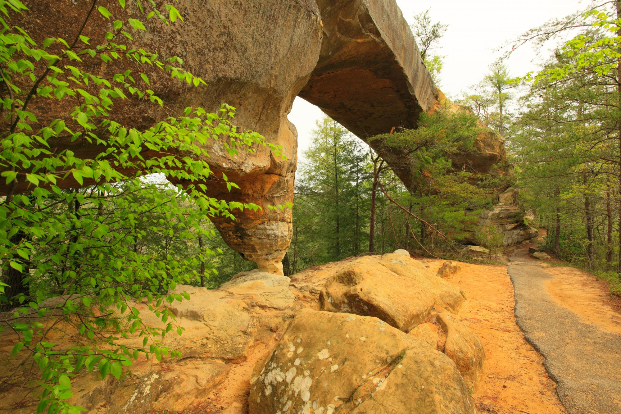 Red River Gorge Geological Area (Kentucky)
