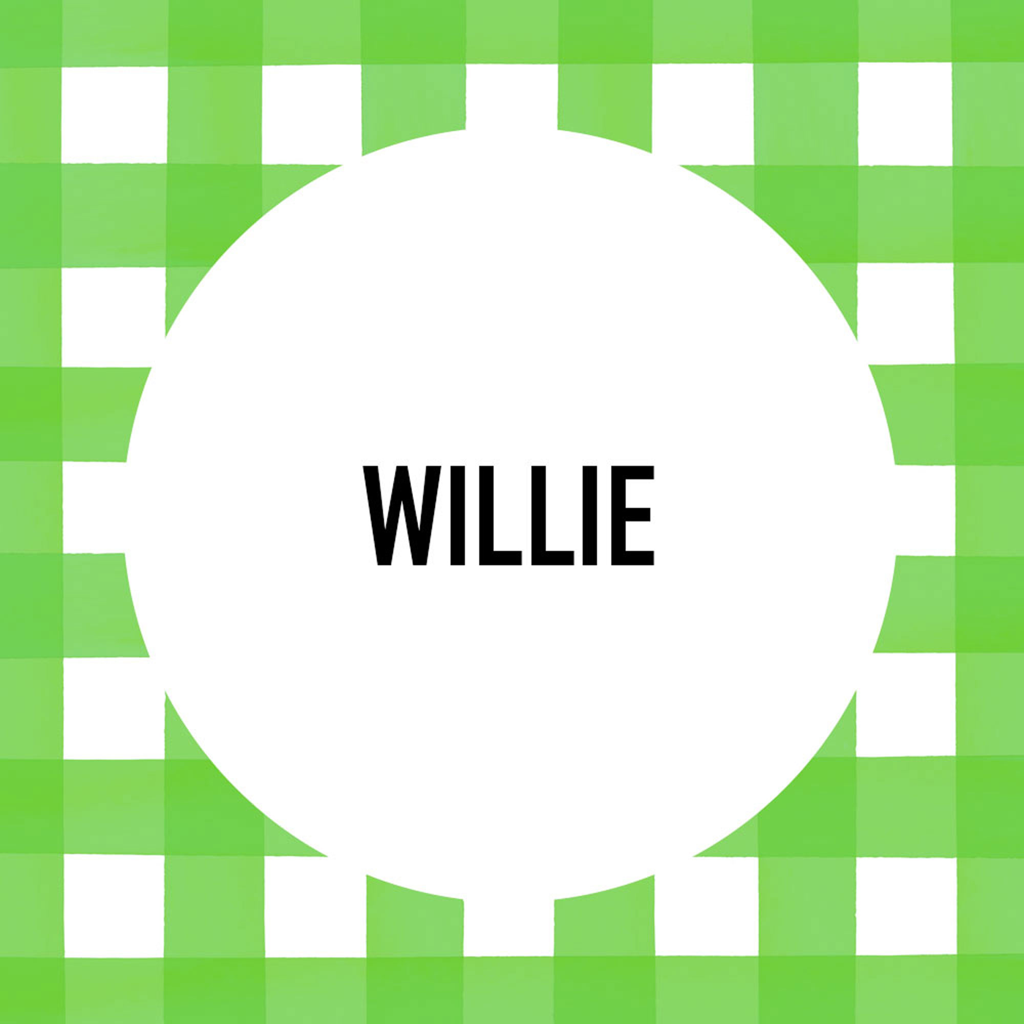 Southern Pet Name: Willie