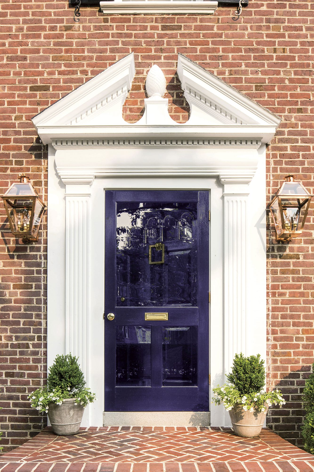 Deep Plum Front Door