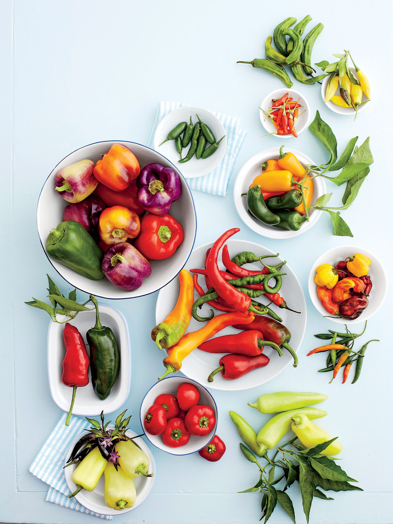 Colorful, hot, and sweet peppers
