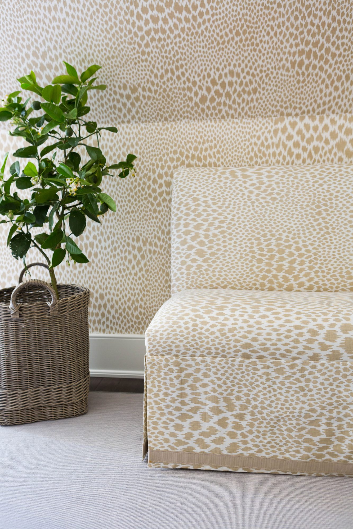 Leopard Print Wall and Couch