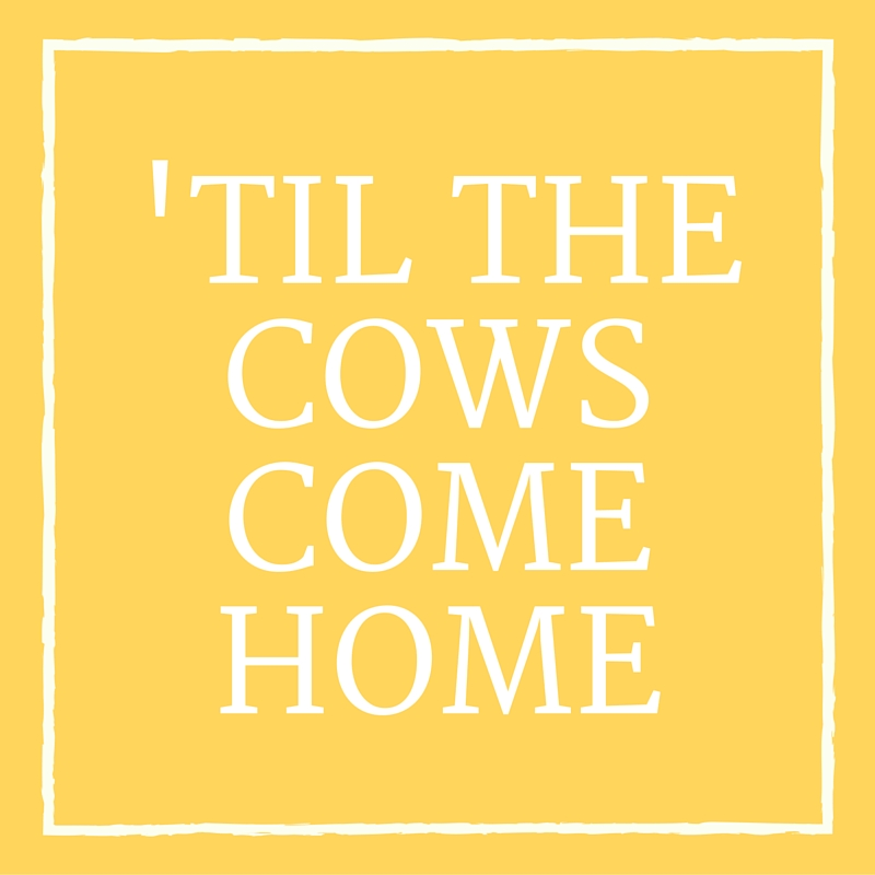'Til the Cows Come Home