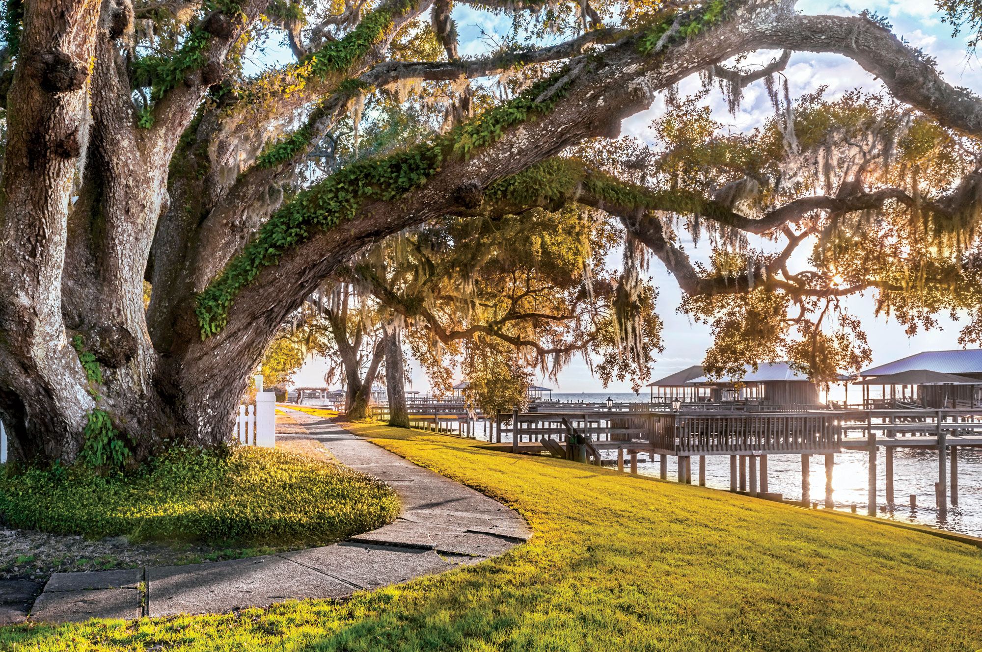 Alabama: Fairhope