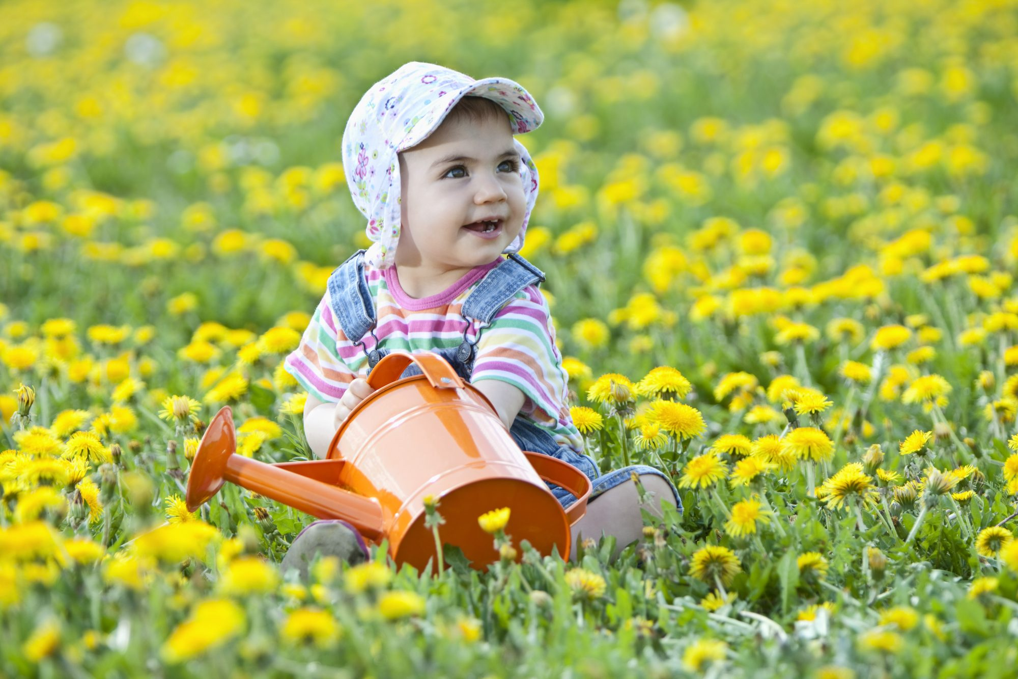 Baby girl in field of yellow flowers