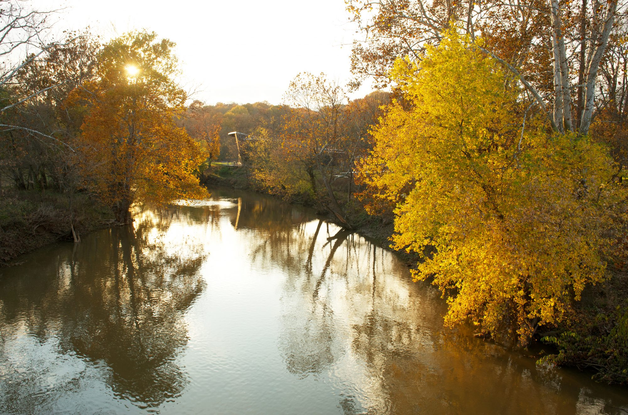 The Parklands of Floyds Fork Fall Color