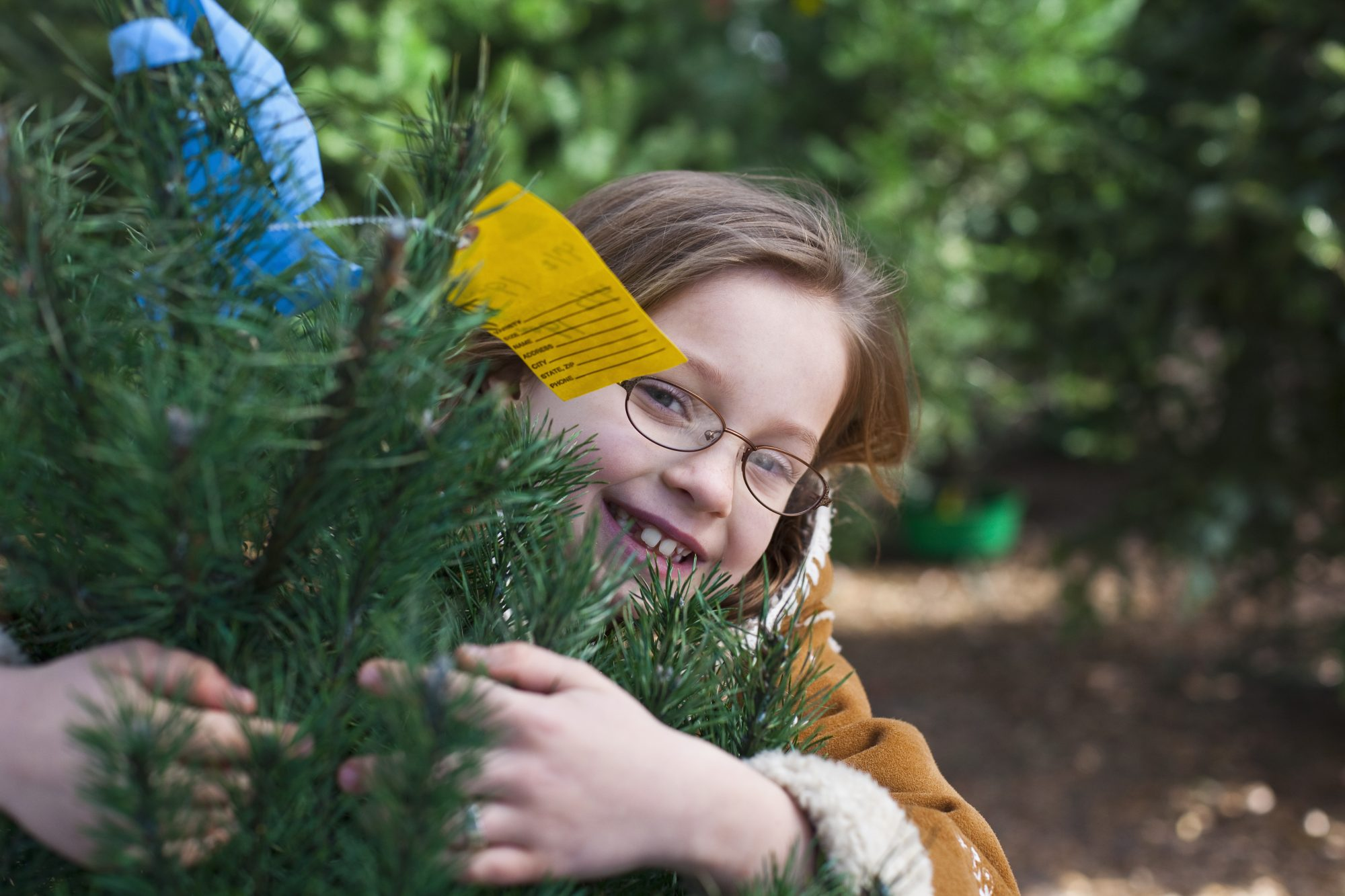 Child at Christmas Tree Farm