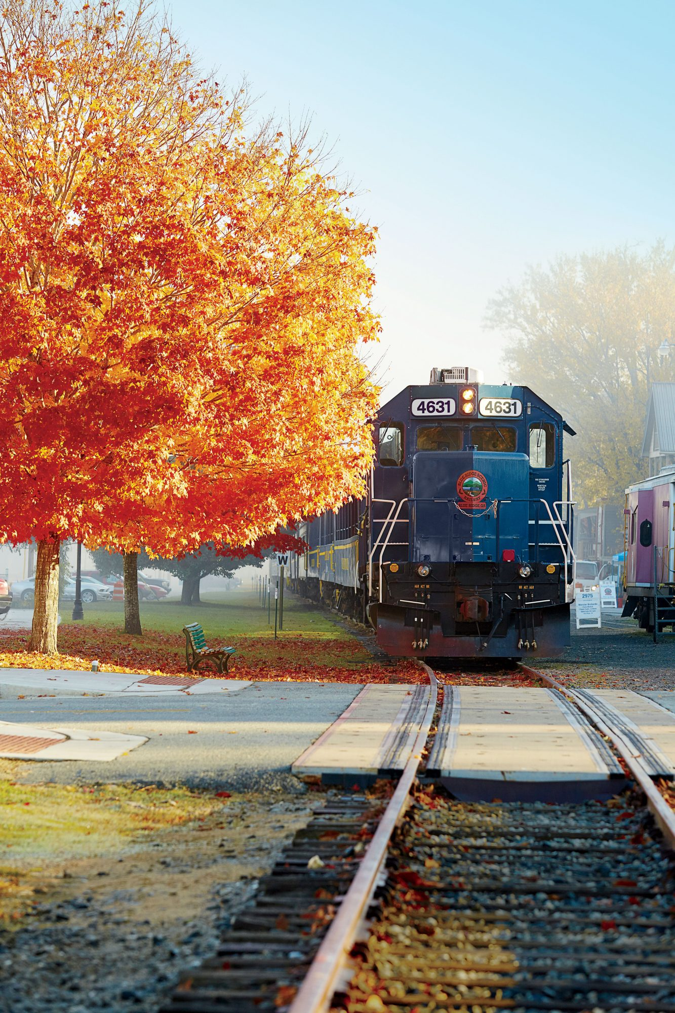 Fall Color by Train