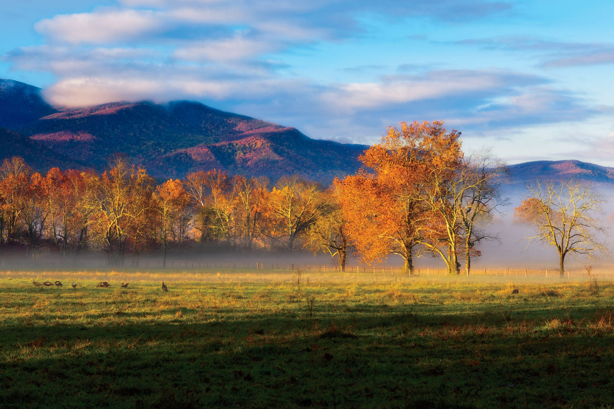 Cades Cove in Tennessee Mountain View
