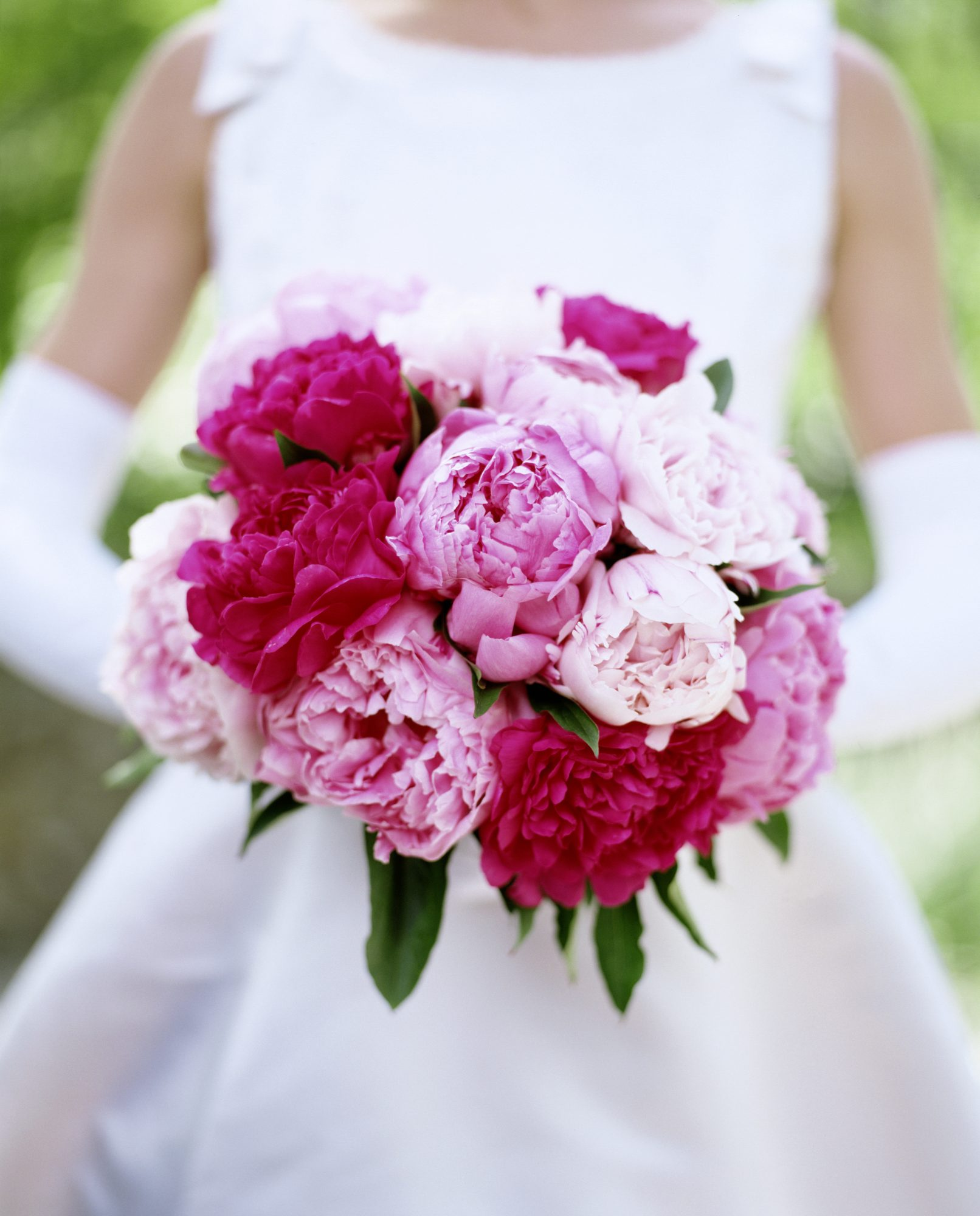 Peony Facts Wedding Bouquets