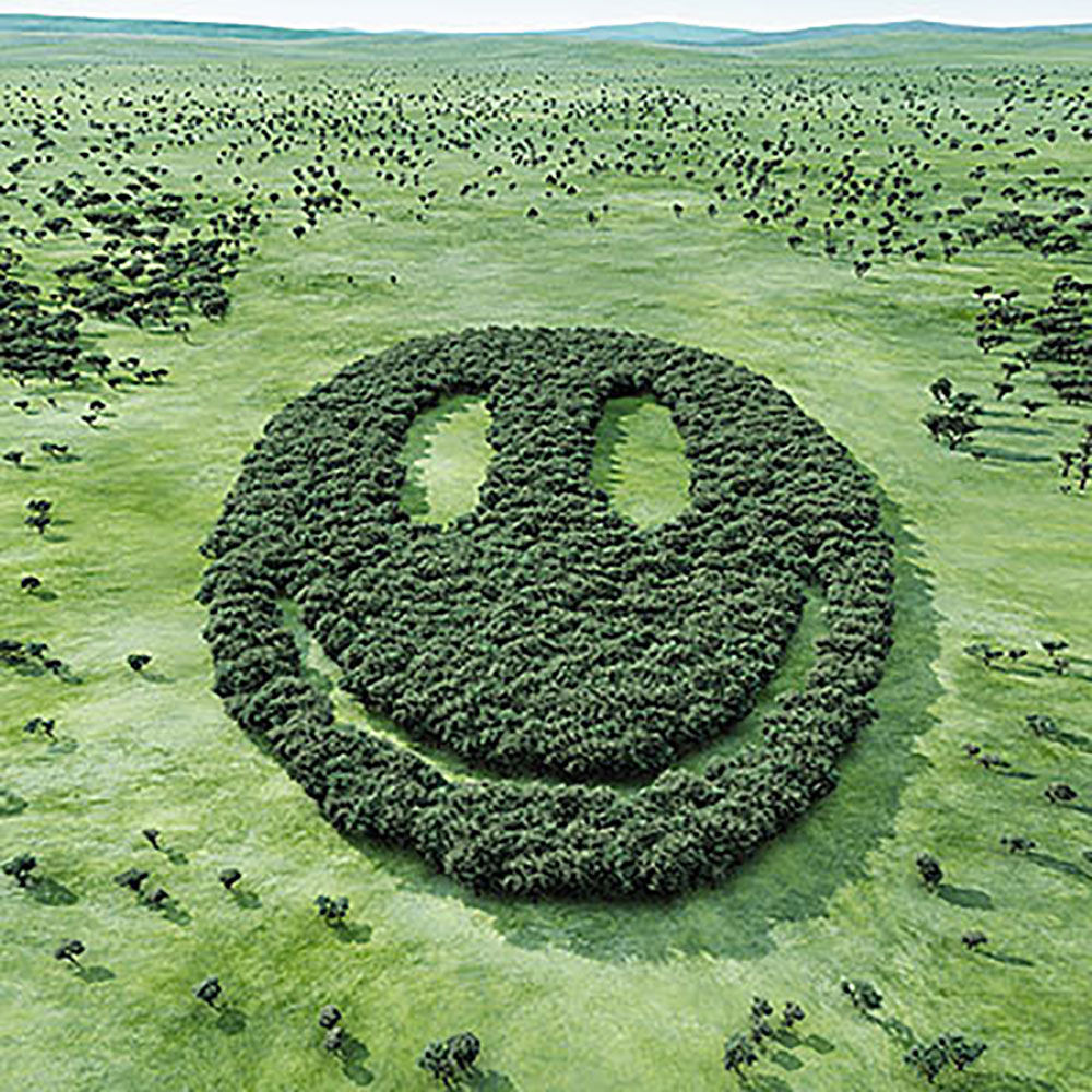 Smiling Face Made of Trees in Grassy Field