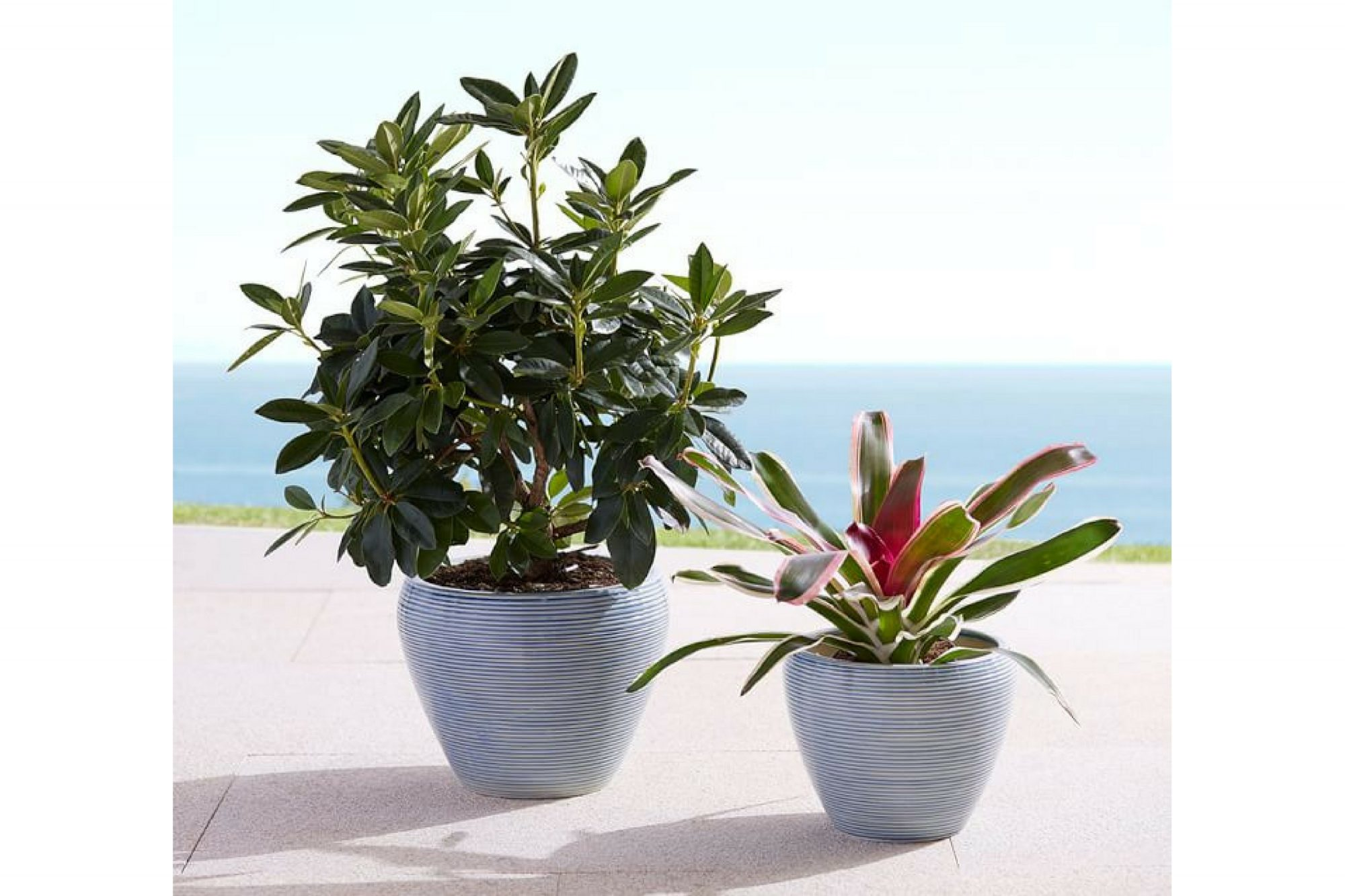Pots for Indoor Plants ribbed ceramic planter