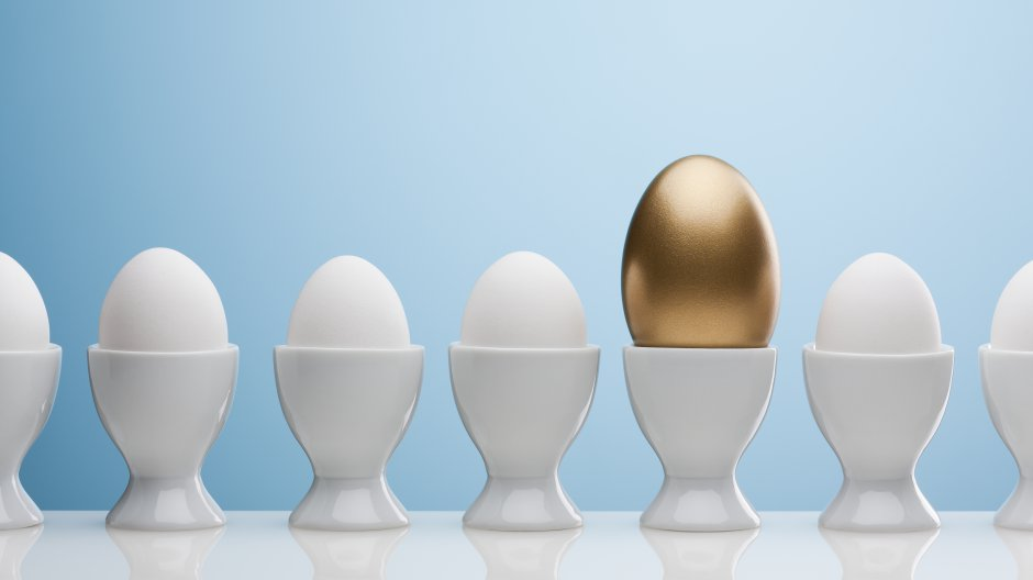Golden Egg: Parents of Successful Children
