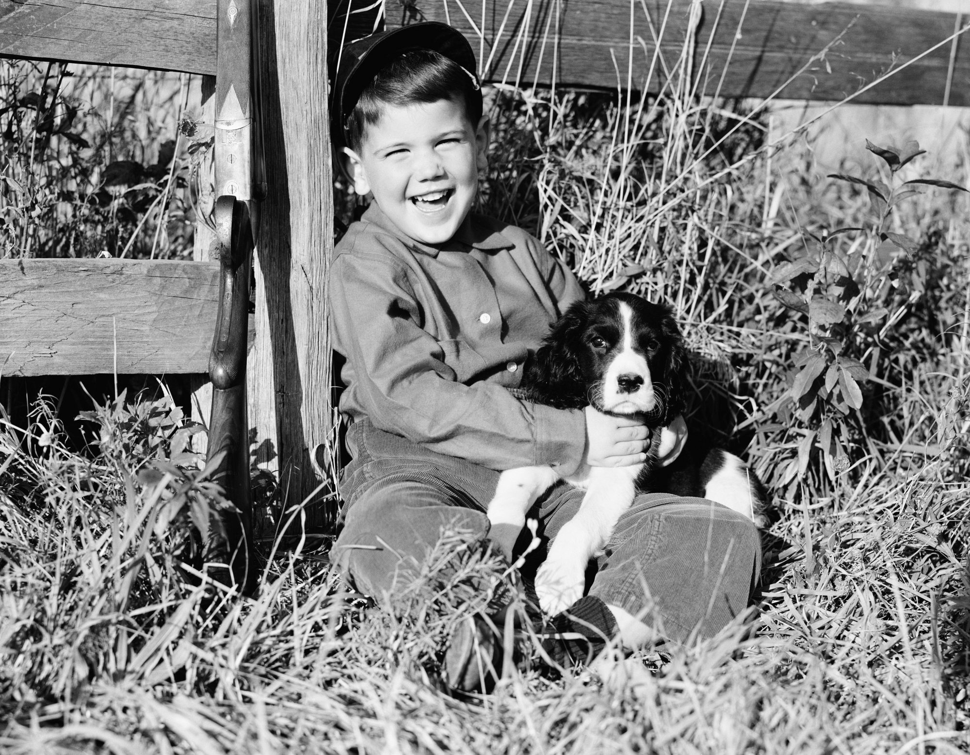 Young Boy and Springer Spaniel