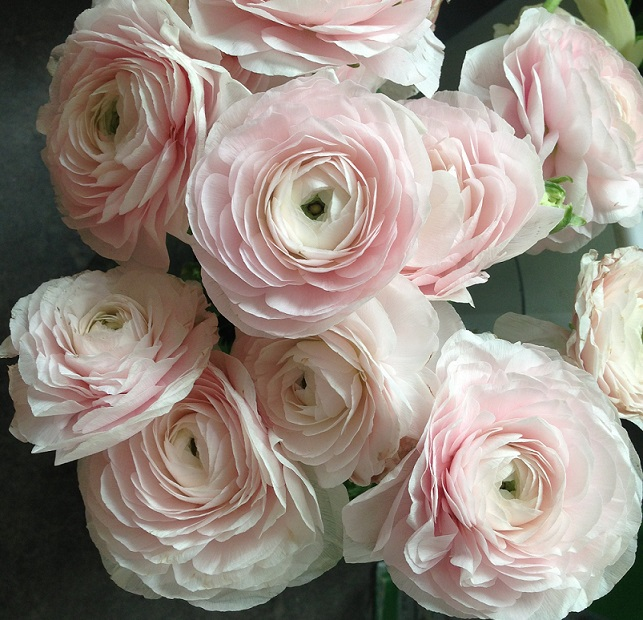 Ranunculus Wedding Bouquets Romantic