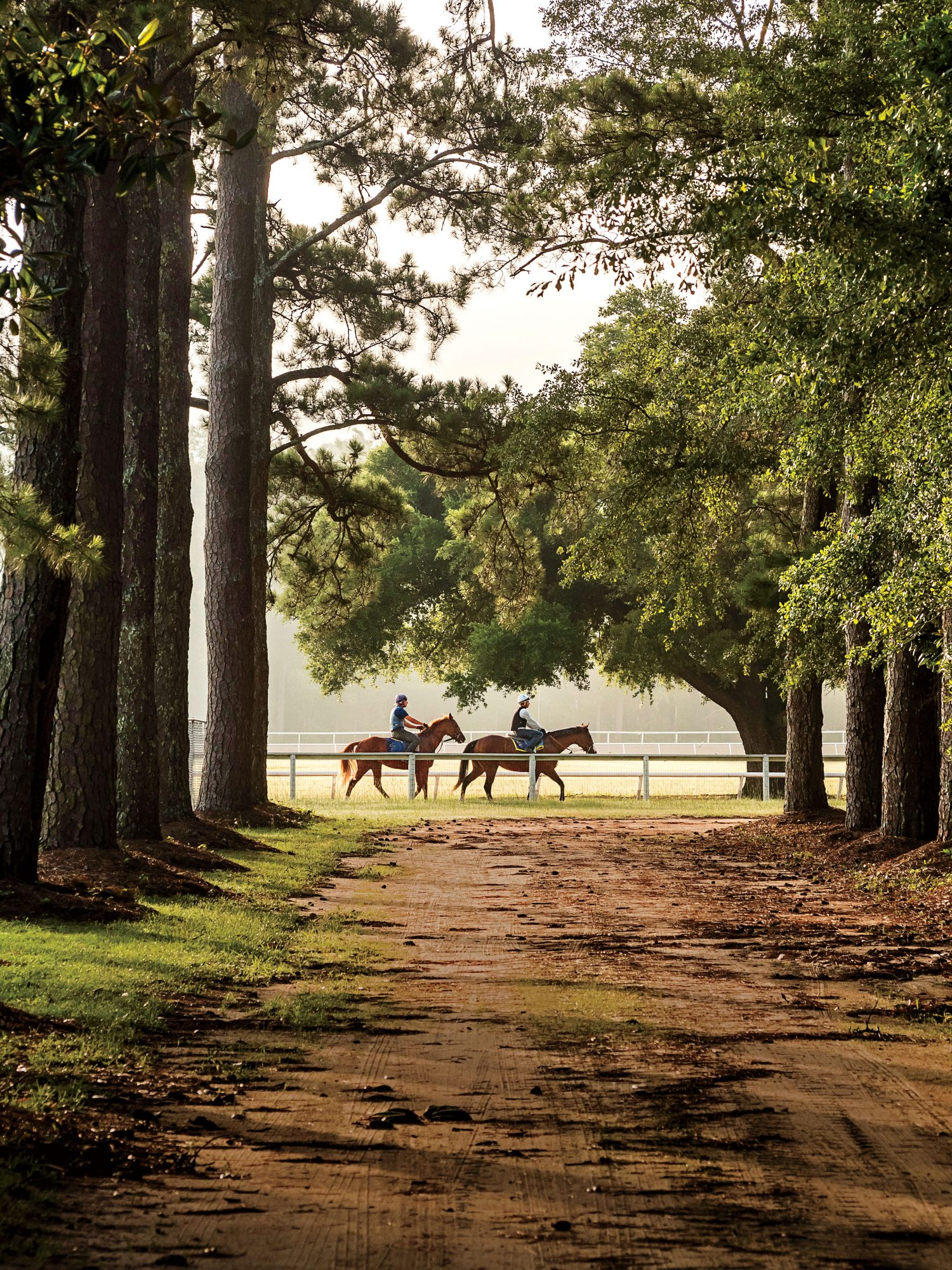 Equestrians in Aiken, South Carolina