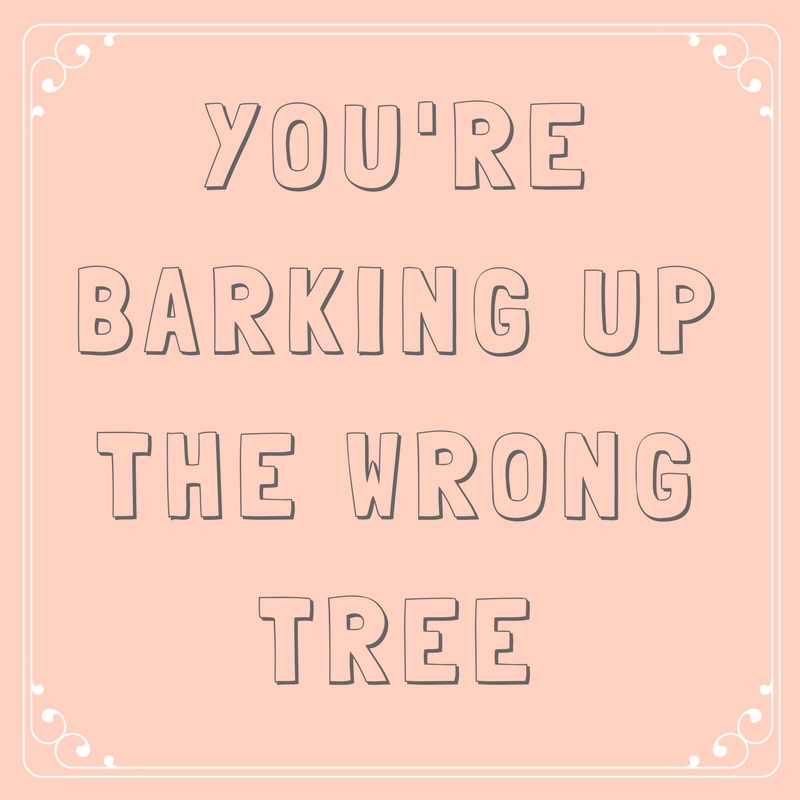 You're Barking up the Wrong Tree