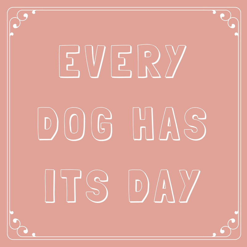 Every Dog Has Its Day