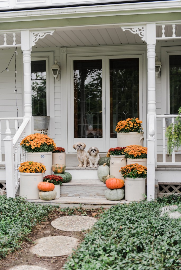 Incredible Ways to Decorate with Mums Vary Heights and Sizes