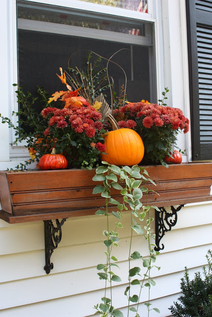 Incredible Ways to Decorate with Mums Put Them In The Window