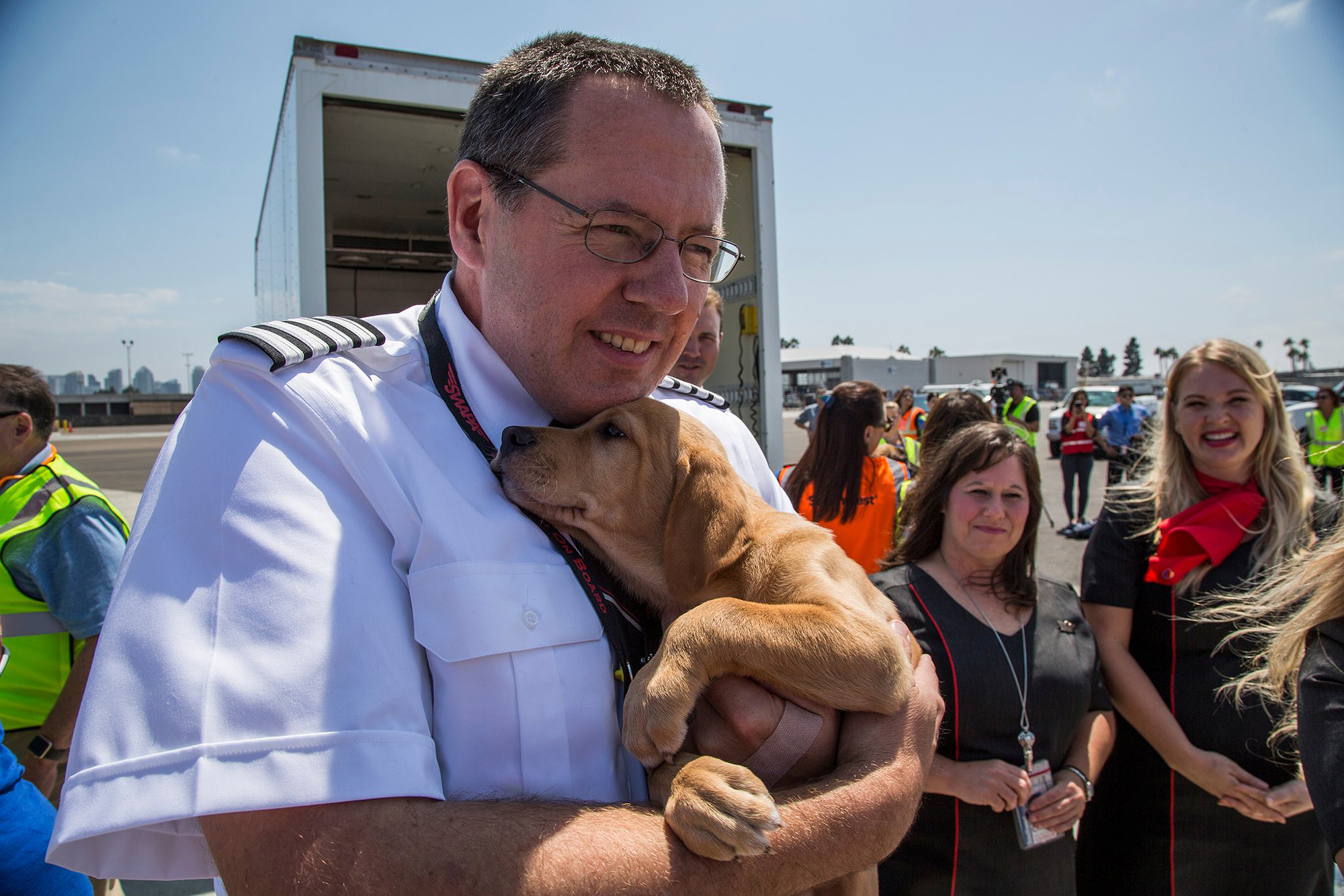 Southwest Airlines Flies Cabin Full of Dogs and Cats Rescued From Harvey-Struck Texas