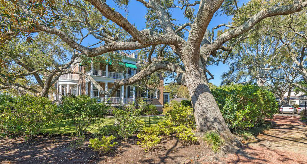 Colonial Brick Home Charleston Oak Trees