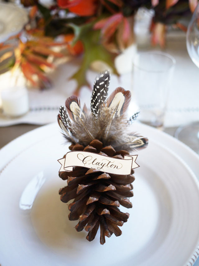 Feather Turkey Pinecones