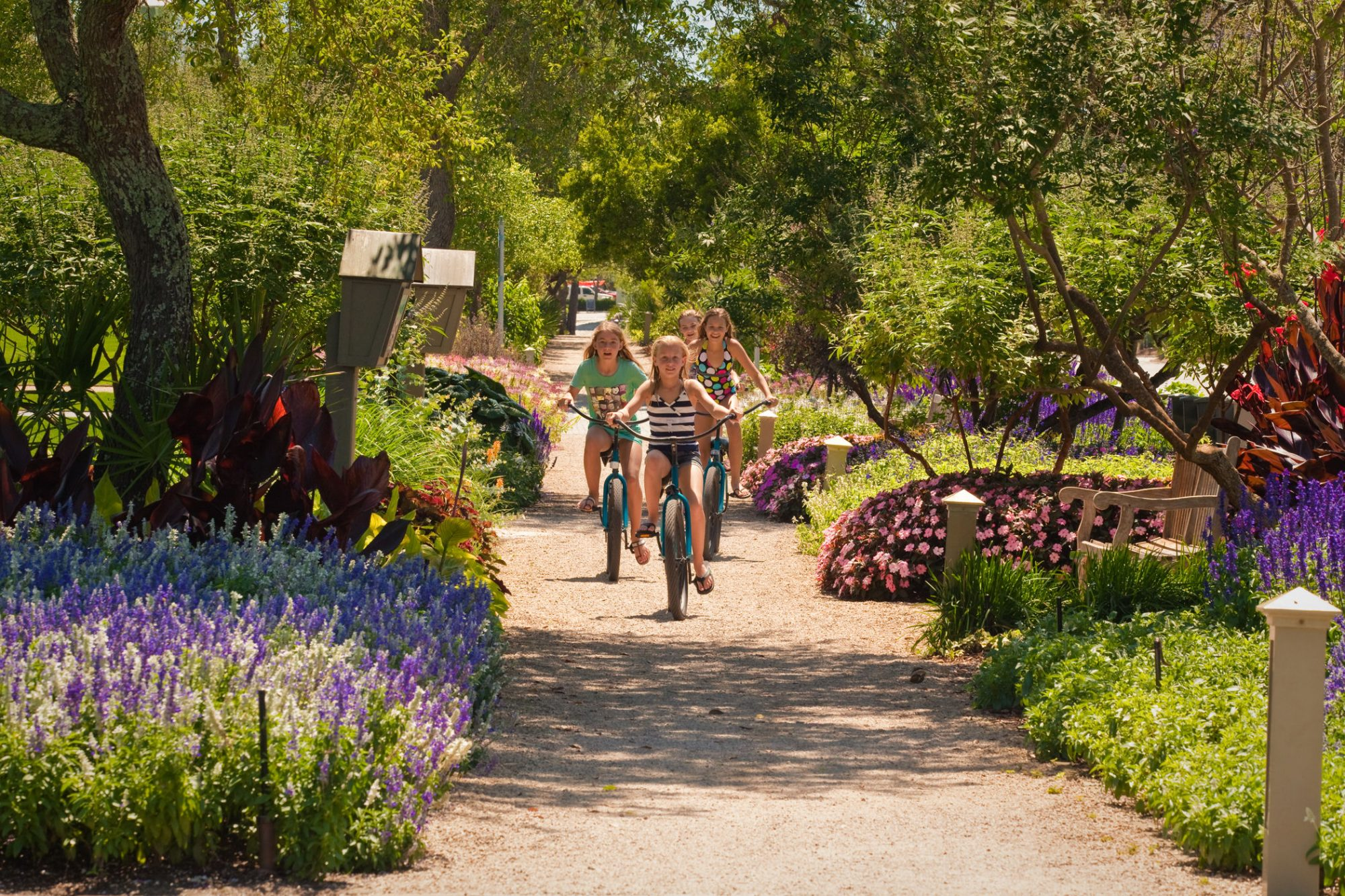 Stop by the WaterColor Bike Barn, adjacent to the BoatHouse, to pick up a bike, and spend the rest of your day exploring the area's extensive woodland trail system, with miles of scenic nature trails that course through preserved state park...
