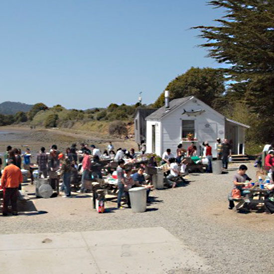 America's Best Oyster Bars: Tomales Bay Oyster Company; Marshall, CA