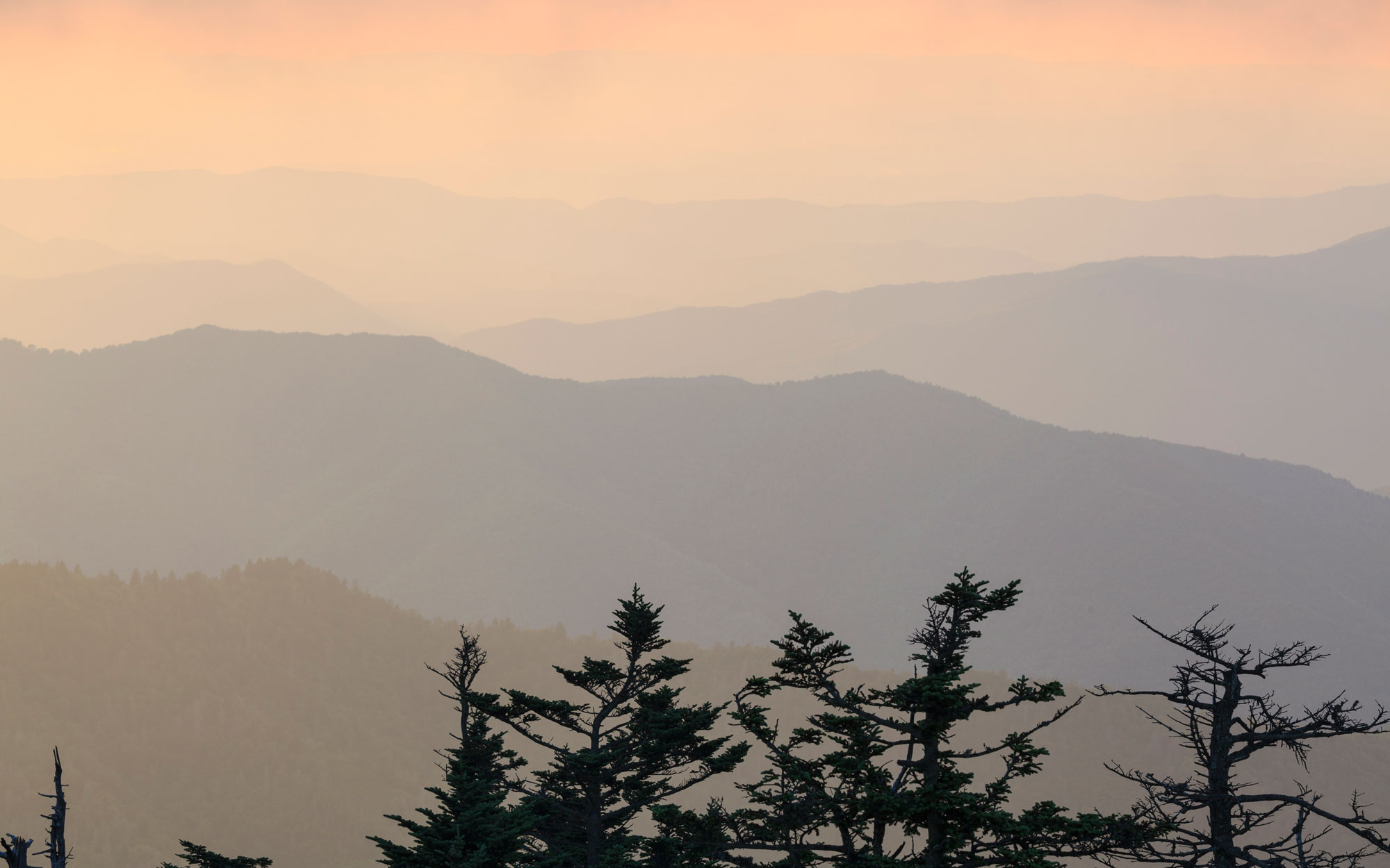 Tennessee from Clingmans Dome Observation Tower