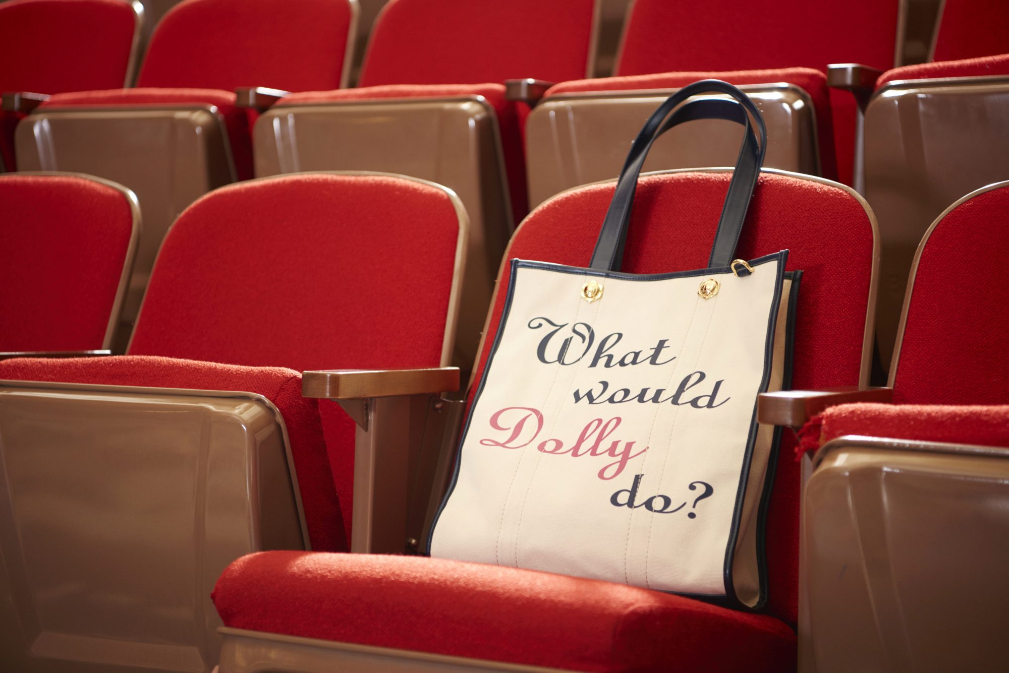 What Would Dolly Do Bag