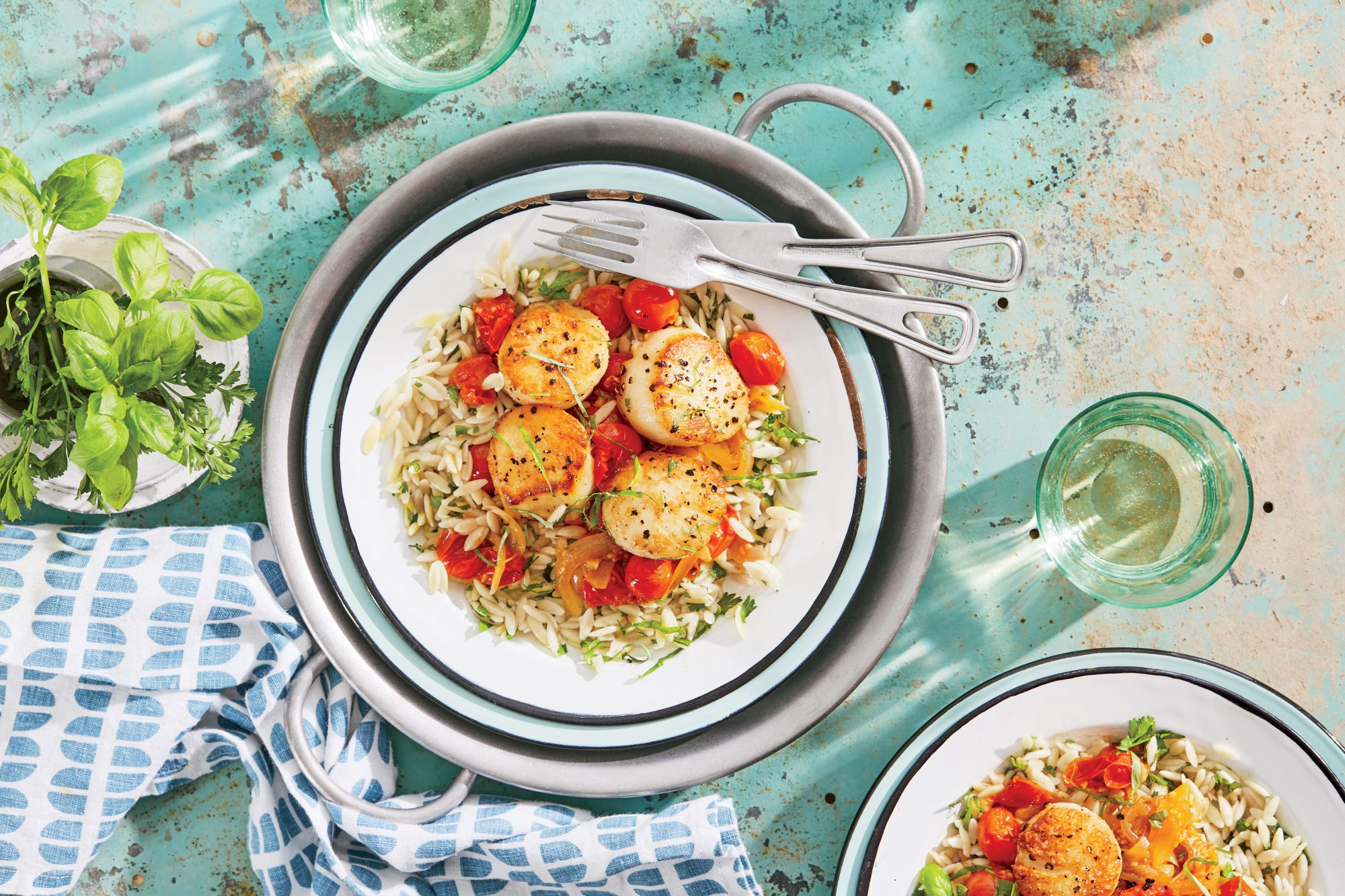 Seared Scallops with Fresh Tomato-Basil Sauce and Orzo Recipe