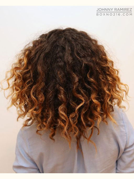 Chestnut Curls with Strawberry Blonde Ends