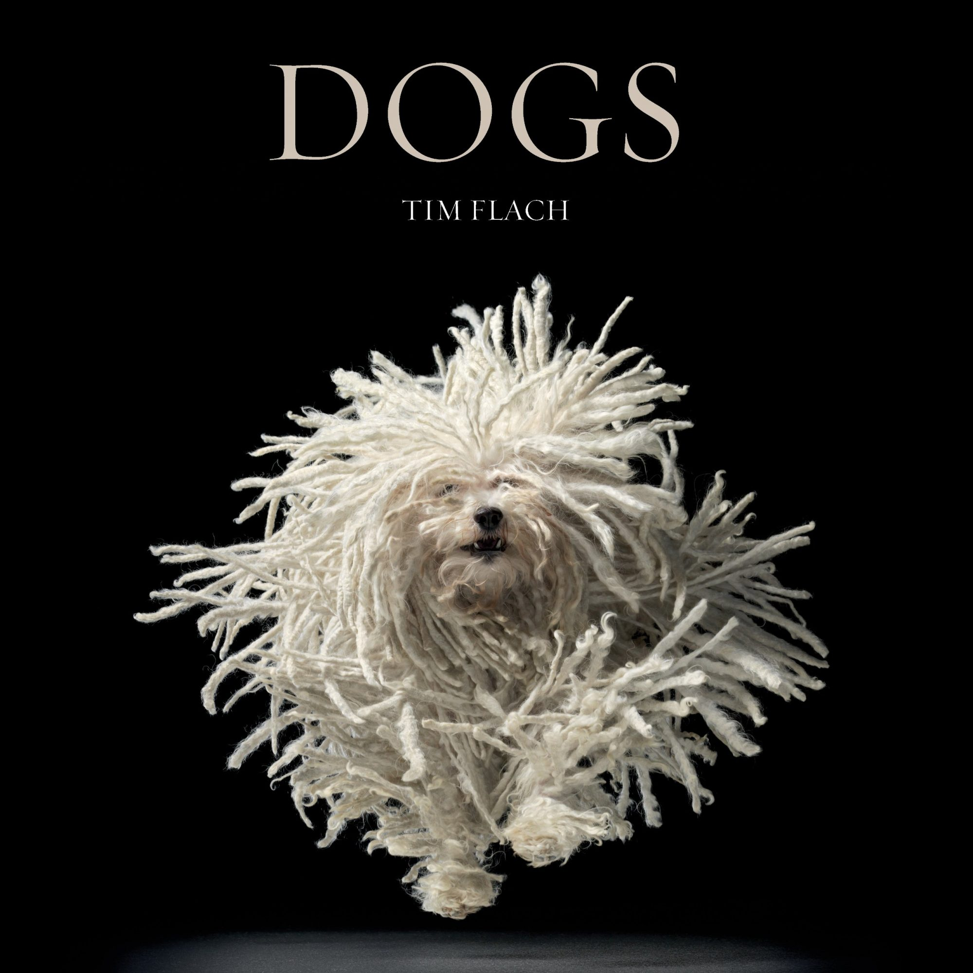 Dogs by Tim Flach and Lewis Blackwell