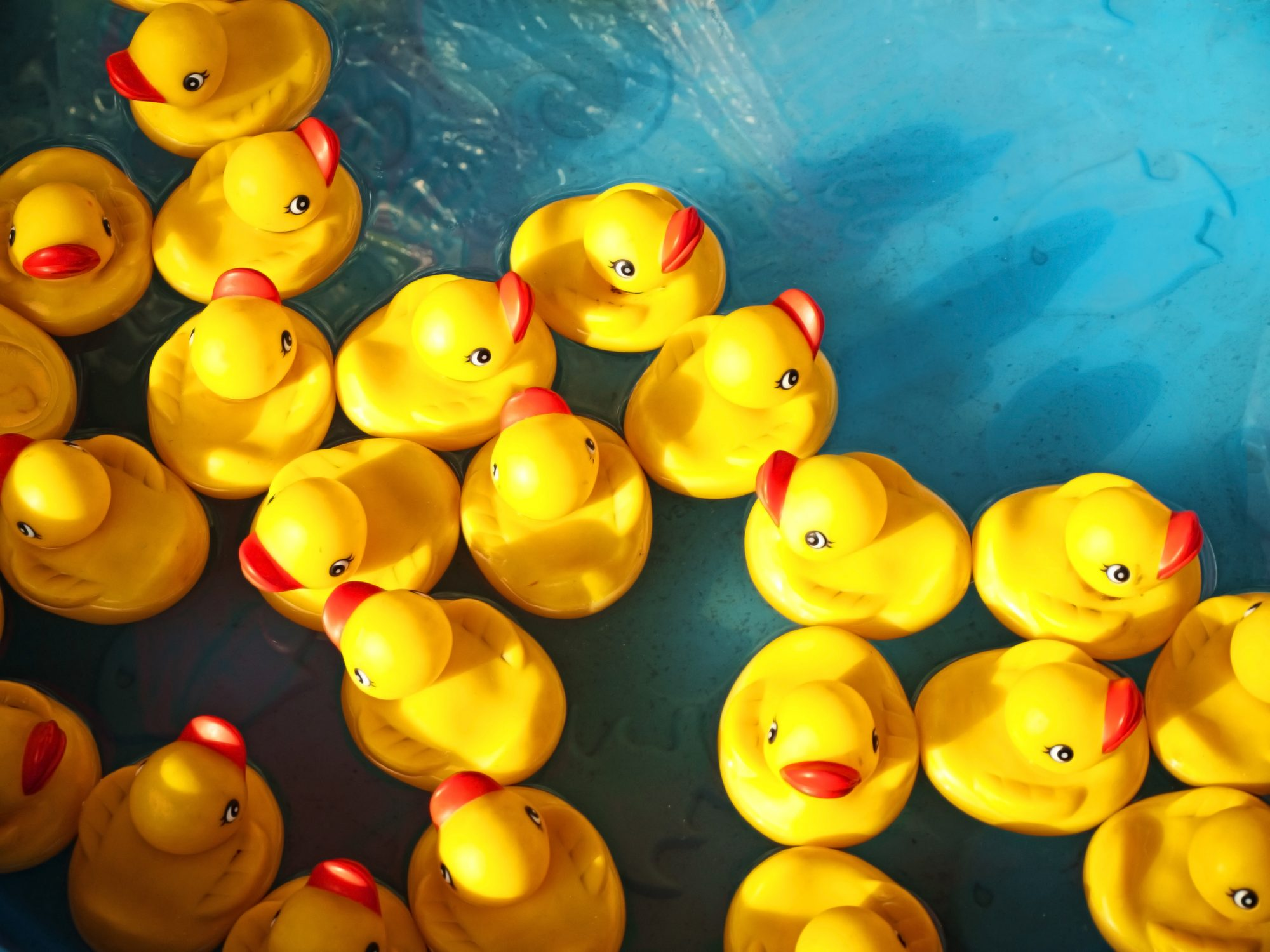 rubber ducks bath