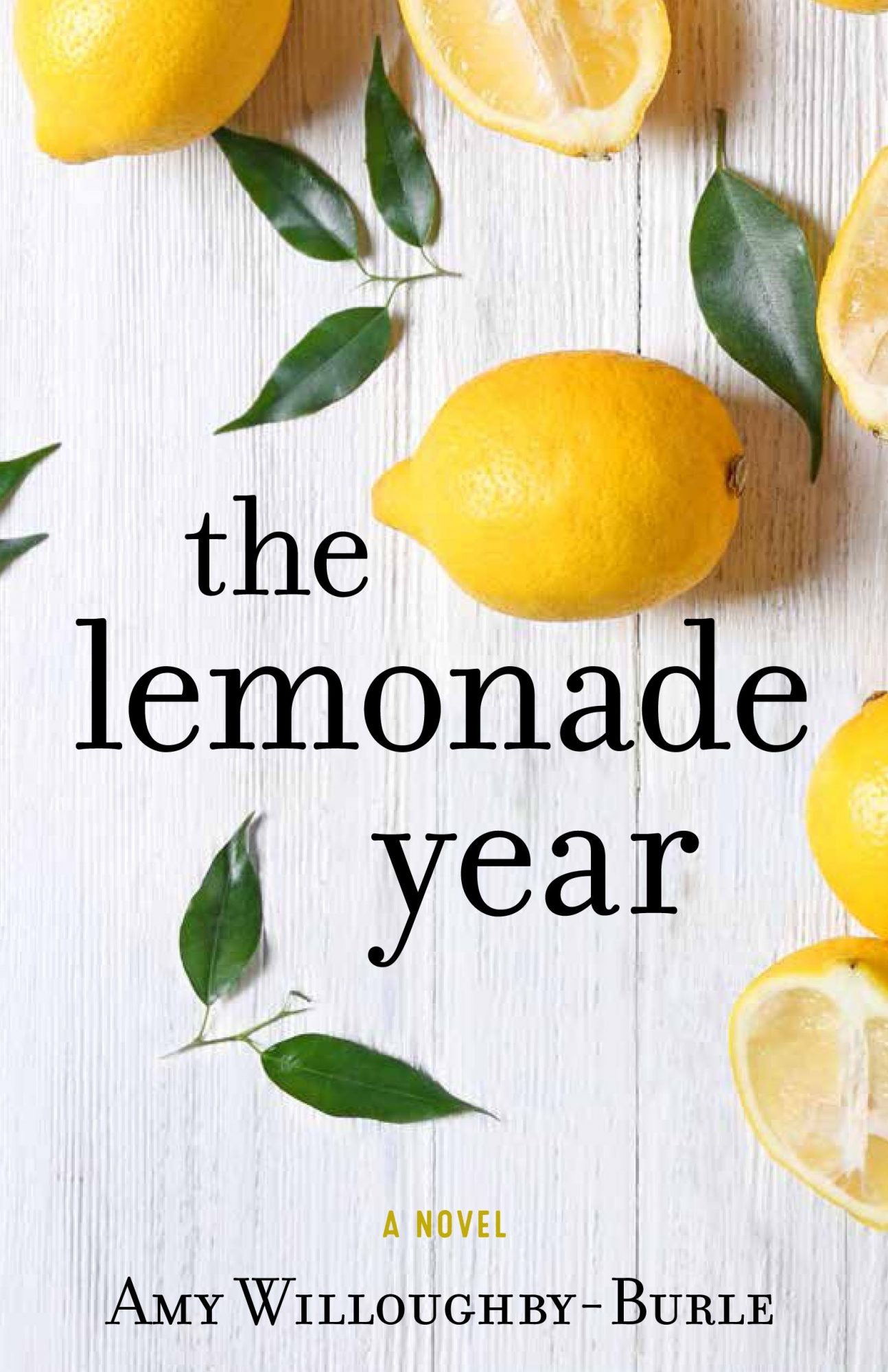 The Lemonade Year by Amy Willoughby-Burle