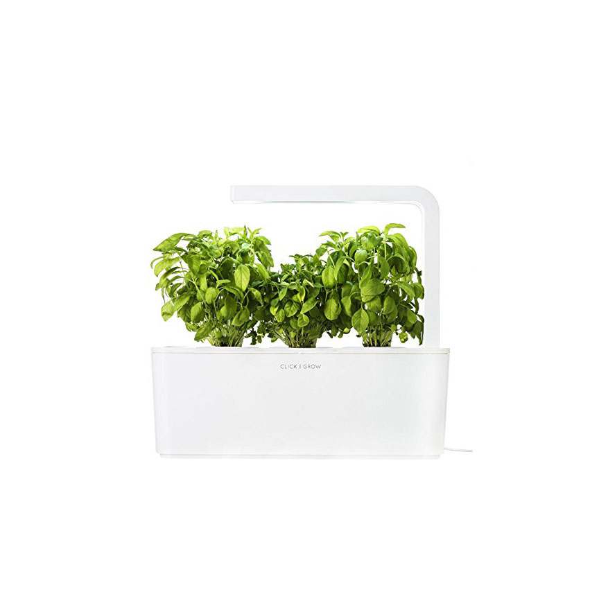 Click and Go Herb Garden