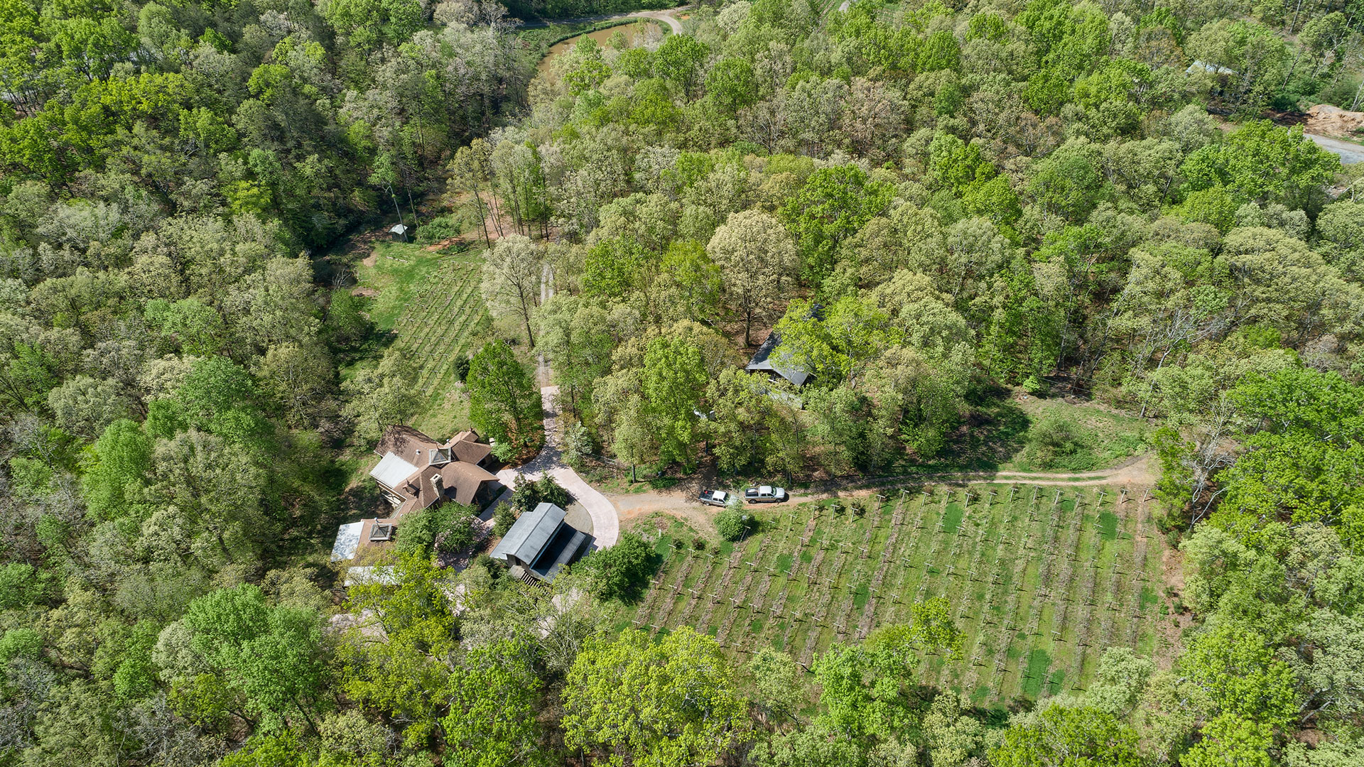 Ball Ground Winery Aerial