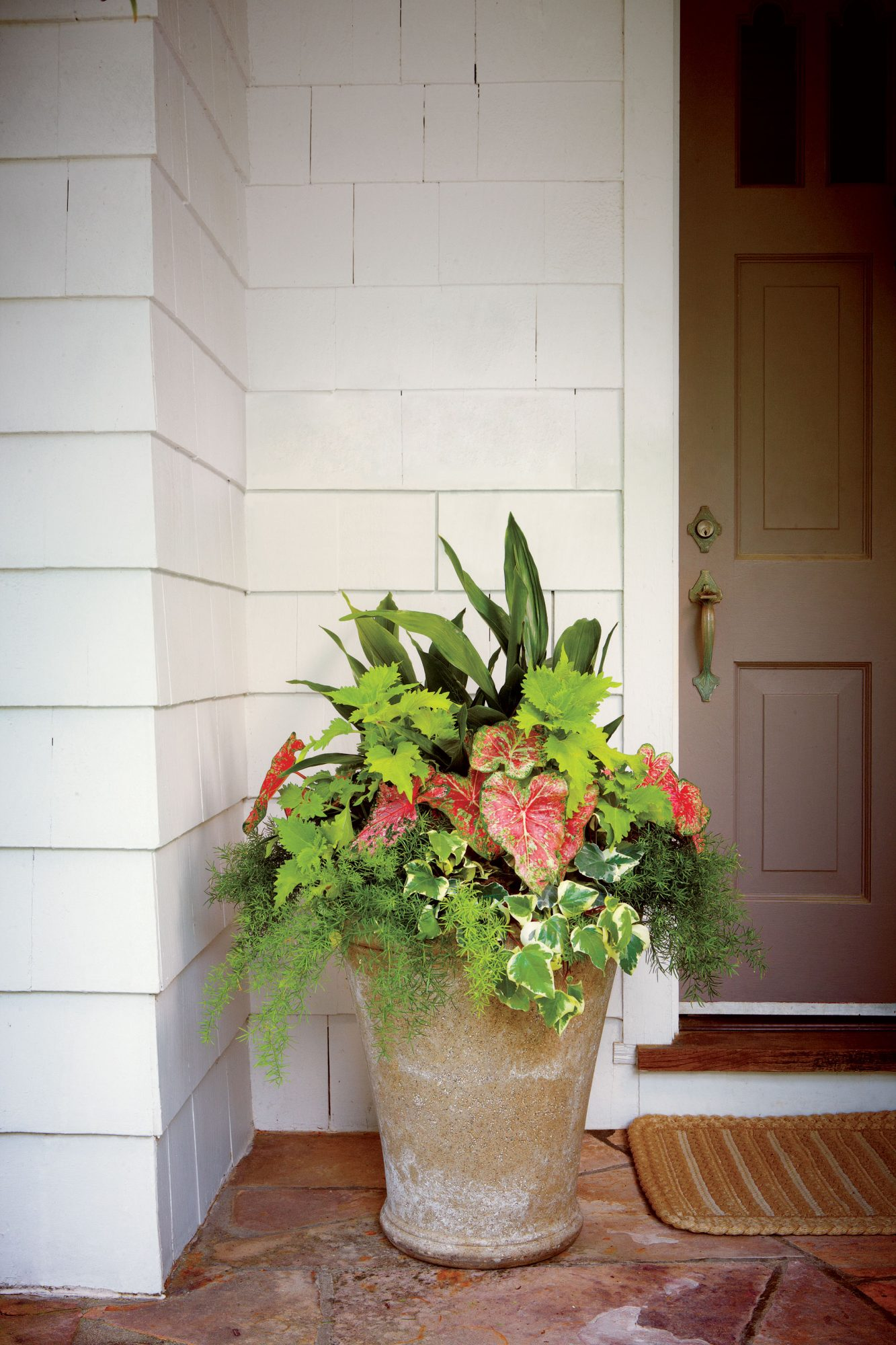 Perk Up a Porch With Evergreens